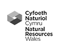 logo natural resources wales